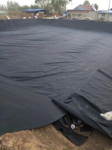 新型养猪场沼气池工程案例产品图