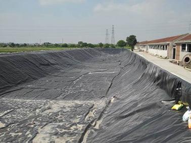 黑膜沼气池的建设特点是什么